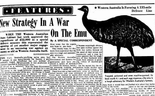 Image 1 - Emu War Newspaper
