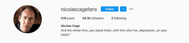 Image 2 - Nicolas Cage Fan Page