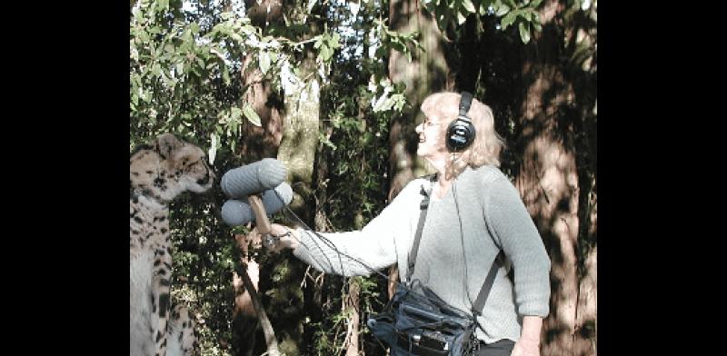 Ann Kroeber recording cheetah vocals