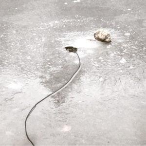 Hydrophone Recording Ice